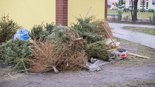 Geschenkpapier, Speisereste, Weihnachtsschmuck: Wohin damit nach den Feiertagen?