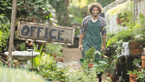 Mit diesen 10 Tipps machen Sie Ihr Büro umweltfreundlicher