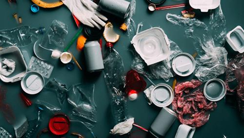 Plastikmüll – ein Problem für Mensch, Tier und Umwelt