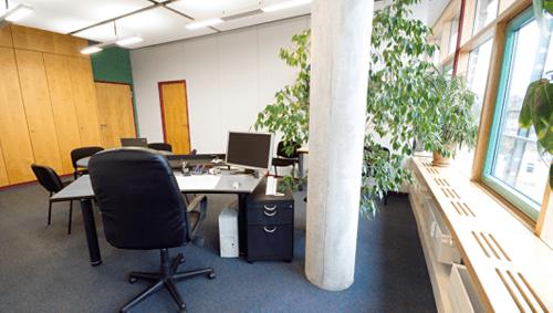 Tipps für bessere Luftqualität im Büro
